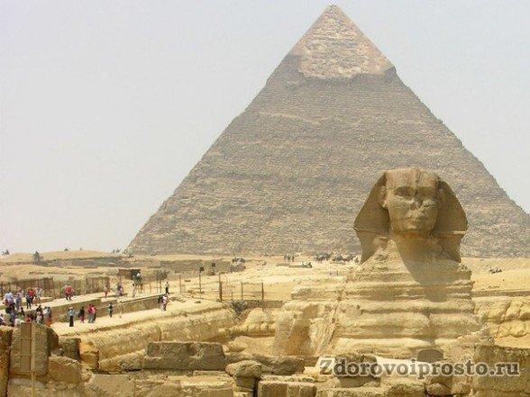 Древние египтяне оставили нам свой рецепт, как заваривать жёлтый египетский чай.