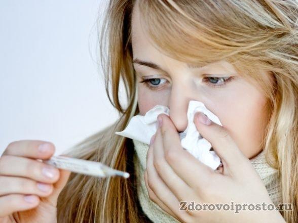 При склонности к простудным заболеваниям дягилевый мёд исключительно полезен.
