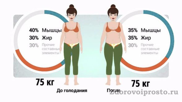 Наглядный пример, как изменяется соотношение жира и мышц после голодания.