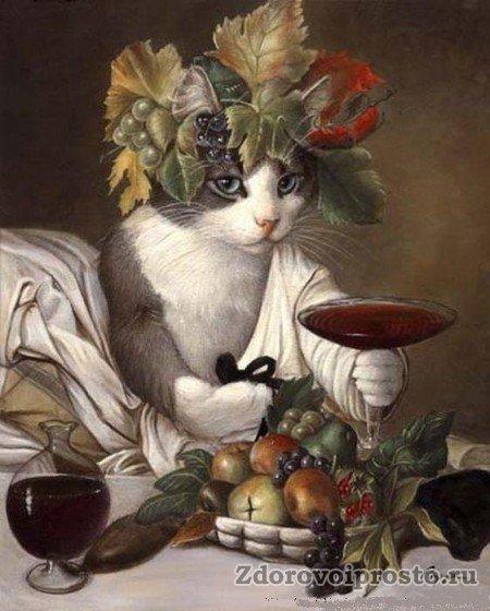 Даже коты понимают, что при правильном употреблении единственное воздействие алкоголя на организм человека – это польза!