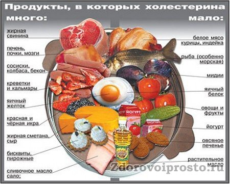 Как уменьшить холестерин в сосудах? Меньше есть продуктов из левой части, а больше – из правой!